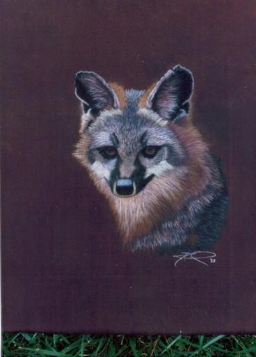 "cricketdiane - ""Fox"" - pastels on silk 16"" x 20"" from 1988"