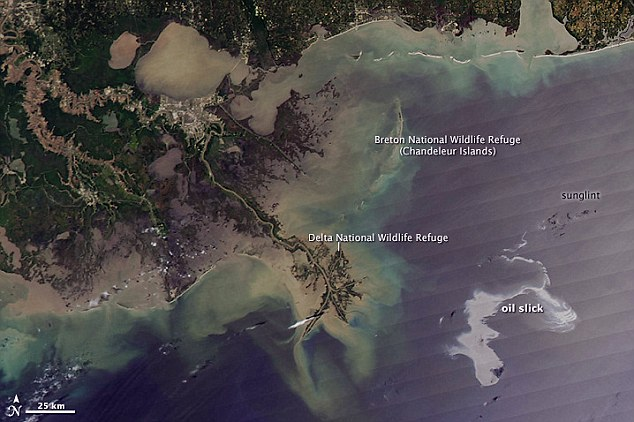 Gulf of Mexico oil spill - May 11, 2010 (NASA)