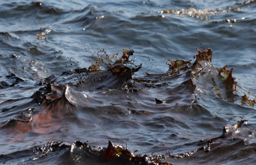 crude oil - petroleum - hydrocarbons filling the Gulf of Mexico ocean water thick and soupy along with thousands of miles of oil slicks and deepwater plumes - but EPA says water is clean with no signs of petroleum or petroleum chemicals - (probably AP photo)