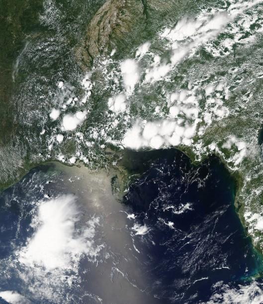 June 1, 2010 - satellite images - Gulf of Mexico - (NOAA / NASA / MODIS)