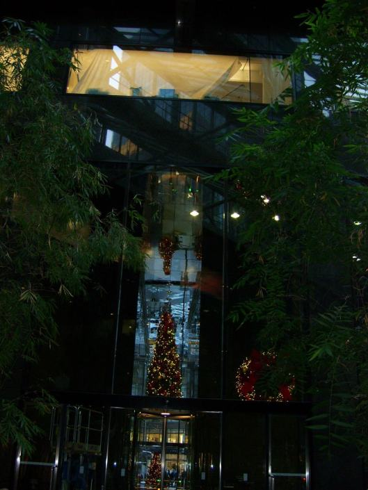 Christmas up down and sideways among the bamboo trees in a beautiful steel and glass atrium - CricketDiane Walkabout New York City 2010