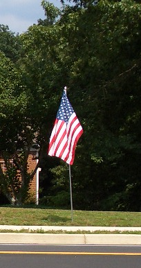 cricketdiane10 - 07-02-10 035_cr - American Flag - photo by cricketdiane 2010
