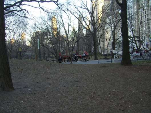 cricketdiane - central park - 03-11-12 036 - 2