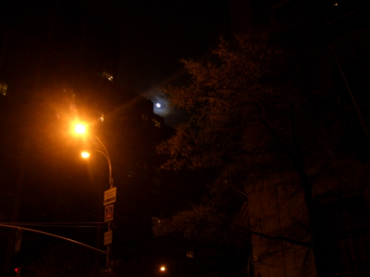CIMG9581 - cricketdiane US Flag Moon Trees StreetLight NYC 2012