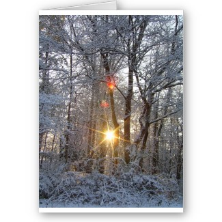 Snowfall Sunrise Greeting Cards to Customize by CricketDiane 2013
