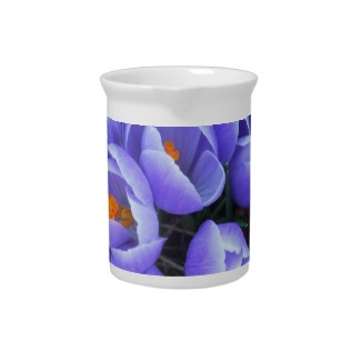 Purple Spring Crocus Flowers Tableware Pitcher by CricketDiane