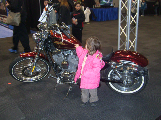 Admiring the Sparkle of a Harley - NYC Auto Show 2013 CricketDiane
