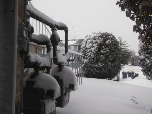 DSCF1799 snow cricketdiane house 2014