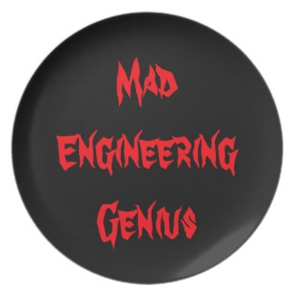 Mad Engineering Genius Geeky Geek Nerd Gifts 2 Plate by CricketDiane