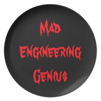Mad Engineering Genius Geeky Geek Nerd Gifts 2 Plate by CricketDiane